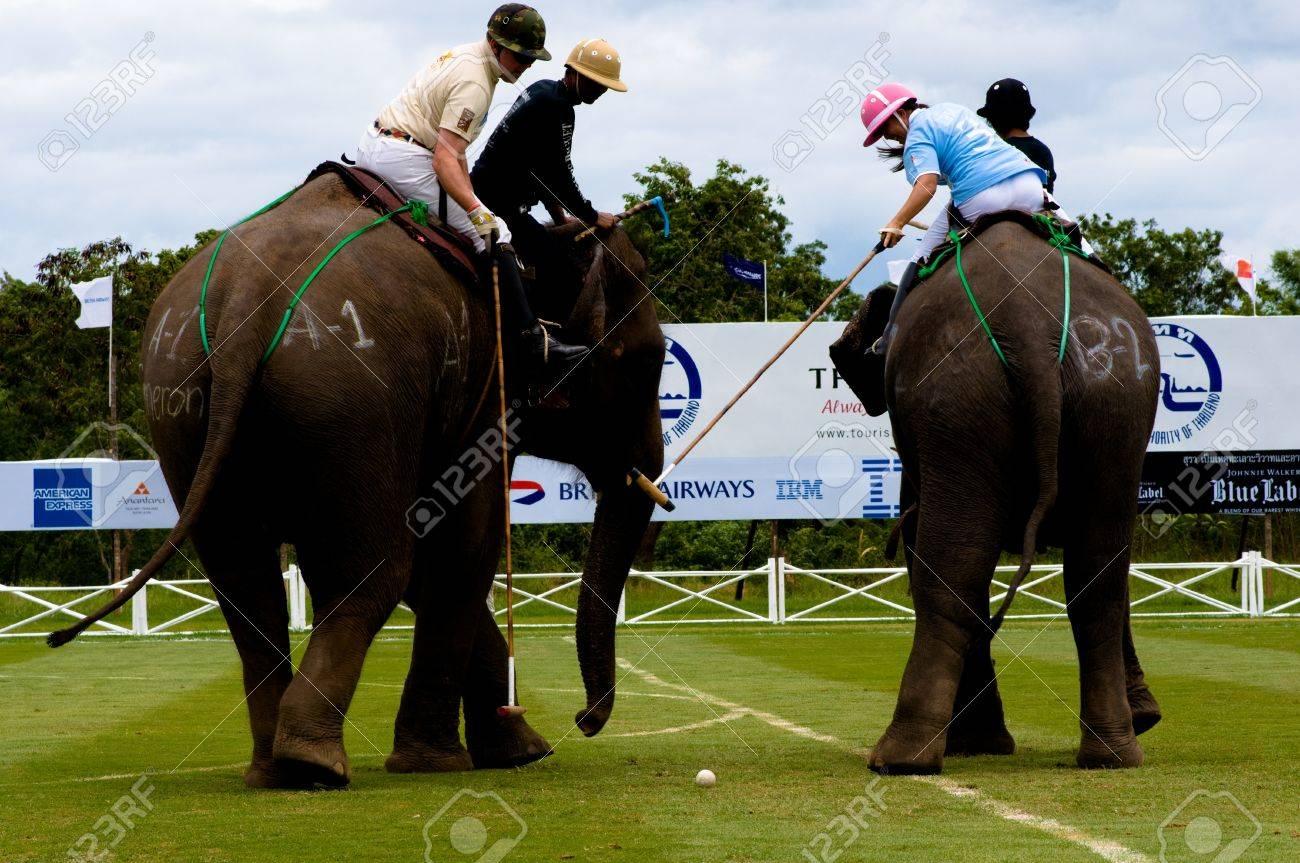 elephant polo games 2011,Hua Hin Thailand  Stock Photo - 10580967