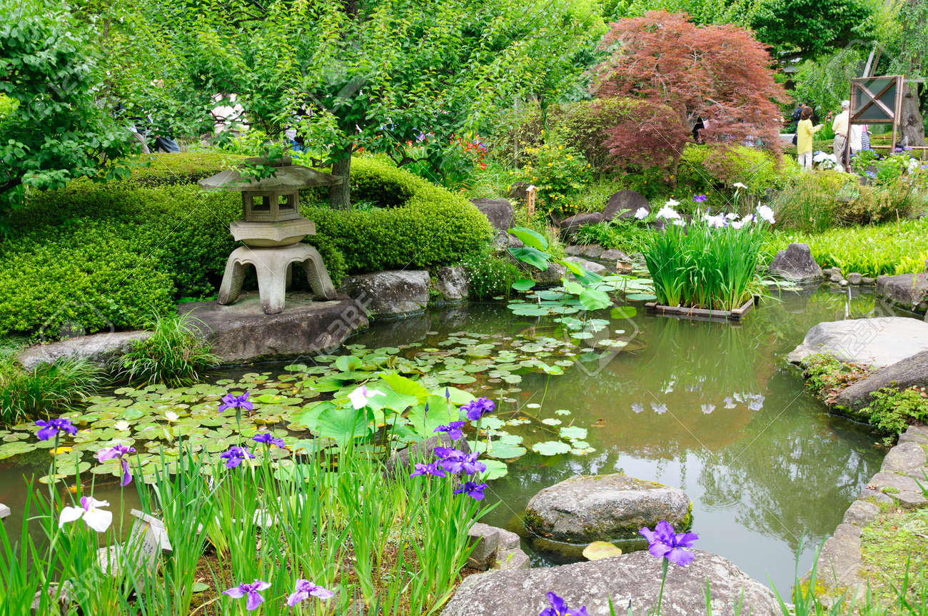 Japanese garden Standard-Bild - 10047344