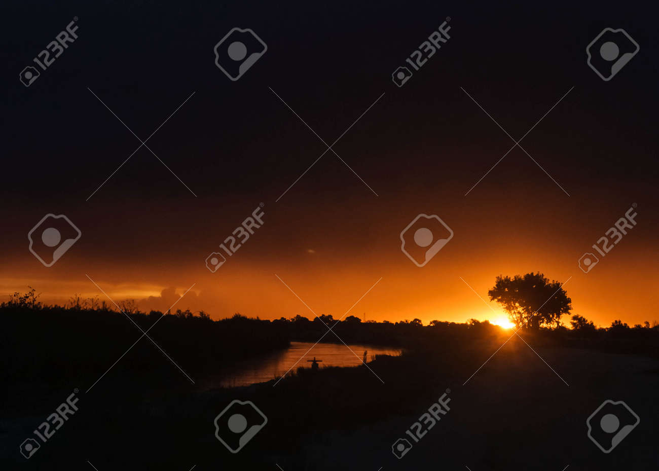 sun rays with tree and water reflection Stock Photo - 23110822
