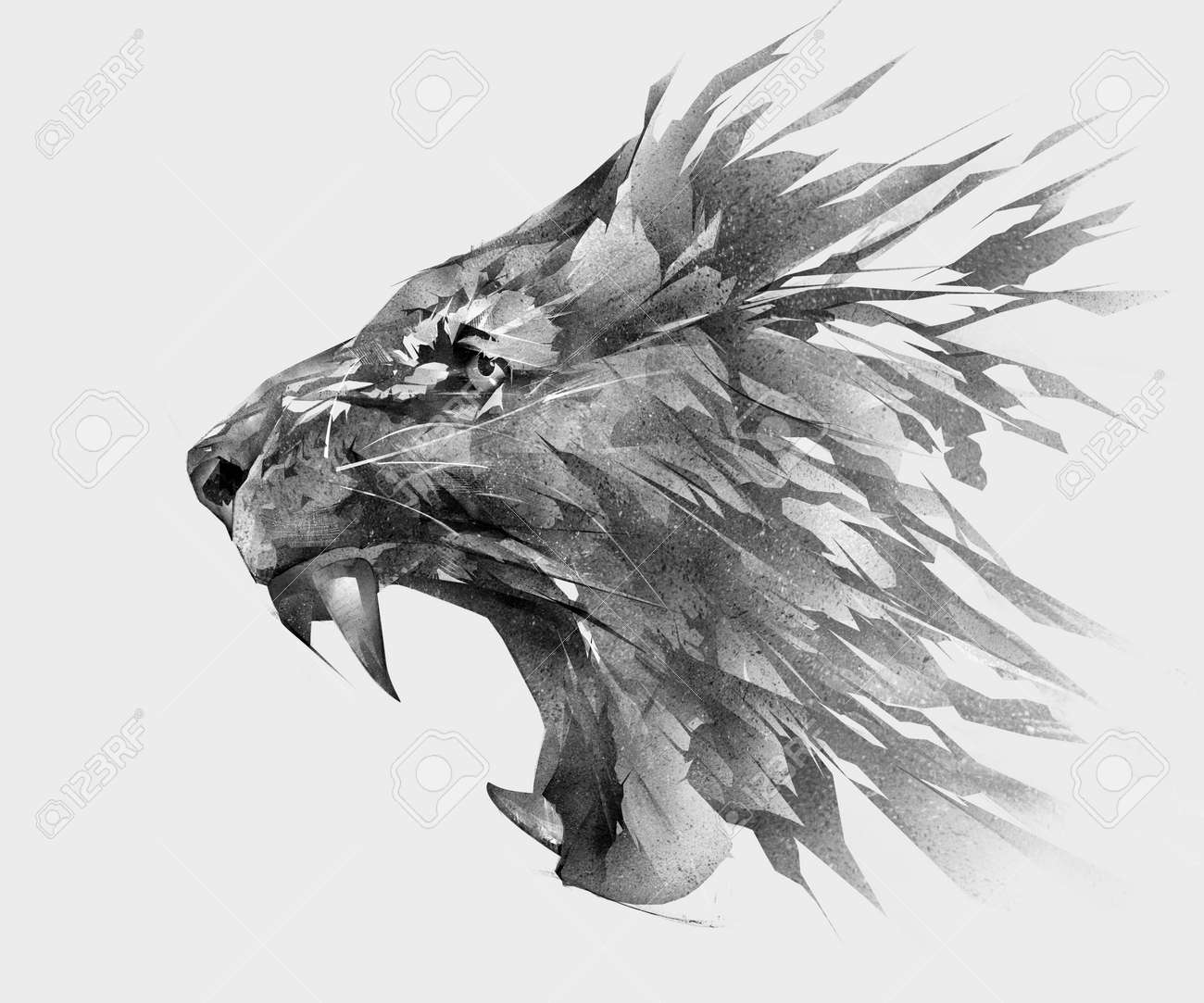 Monochrome Isolated Stylized Drawing Of Lion Face Side View Stock ...