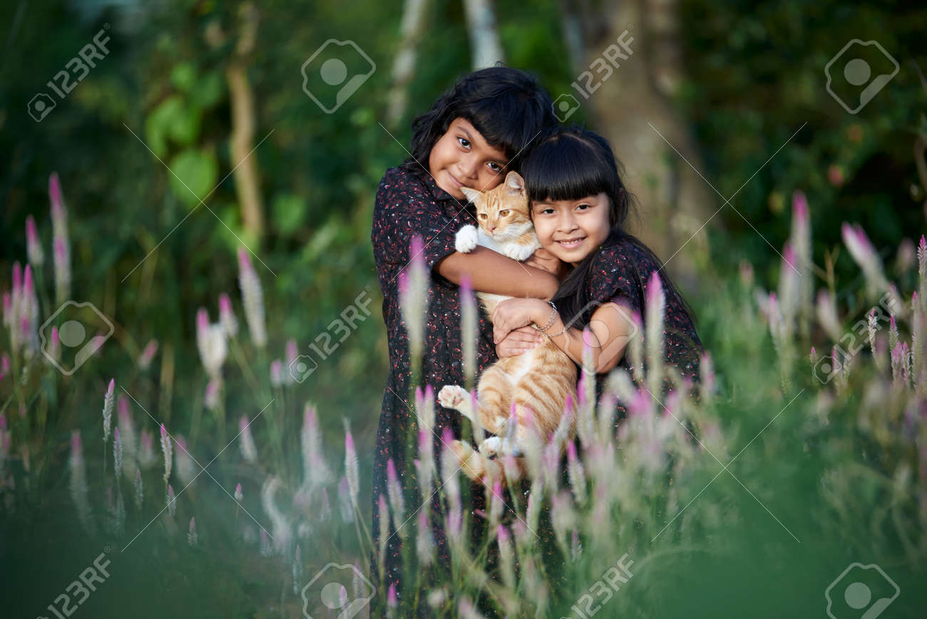 Two cute little girls playing with kitten on beautiful sunny day at park - 171128304