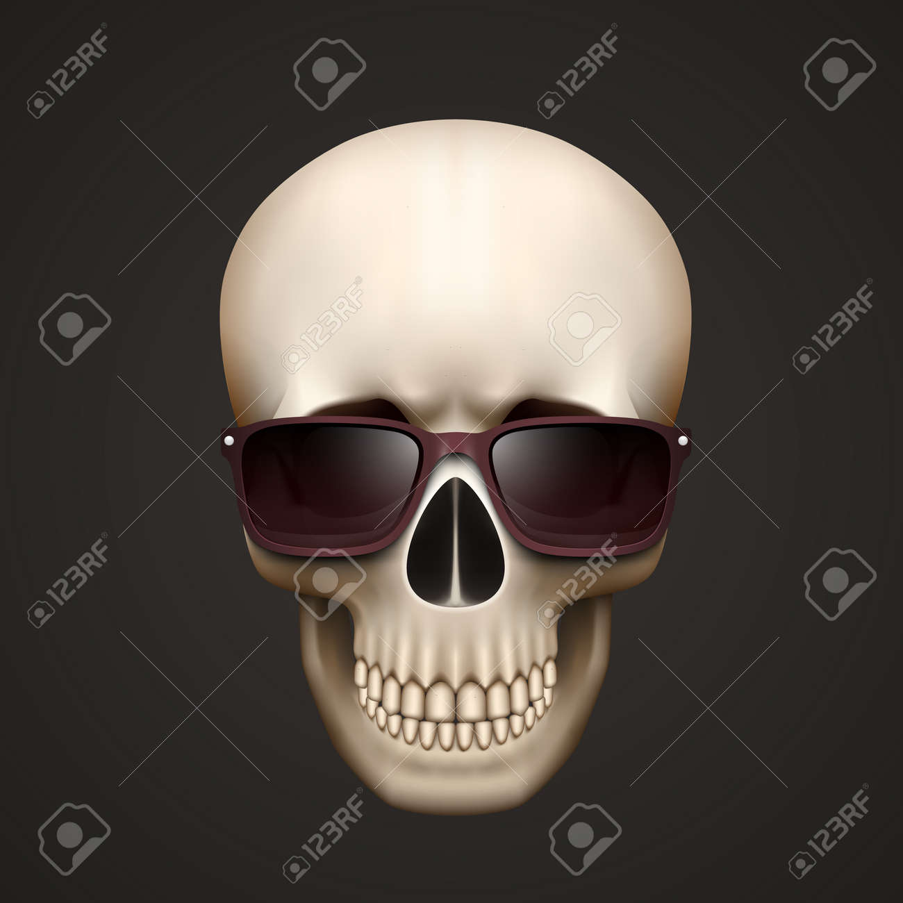 86be807ecfc Human skull isolated with sunglasses. Vector illustration Stock Vector -  35951155