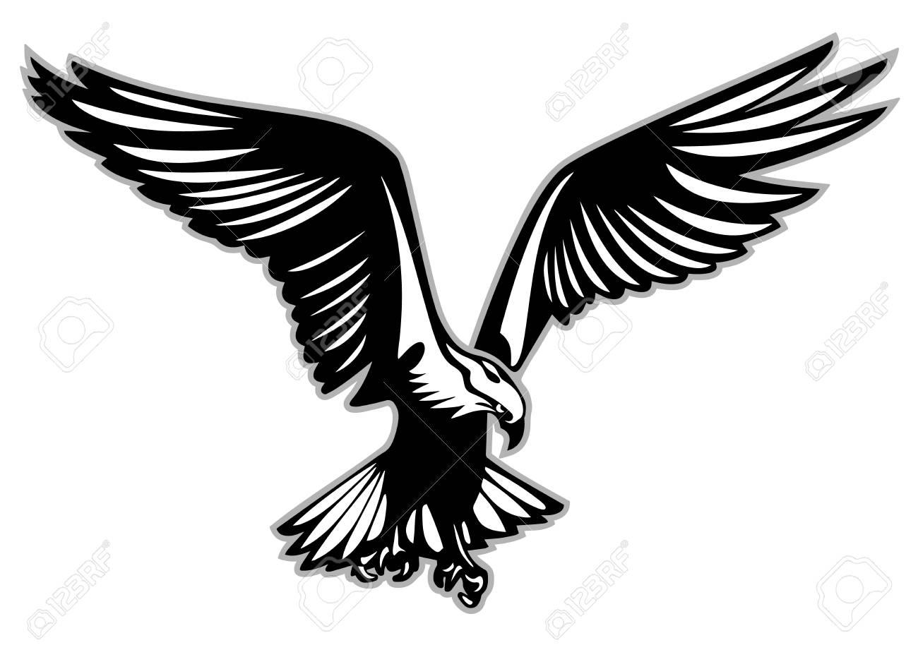 Bird of prey in flight on white background, vector illustration. - 97076663