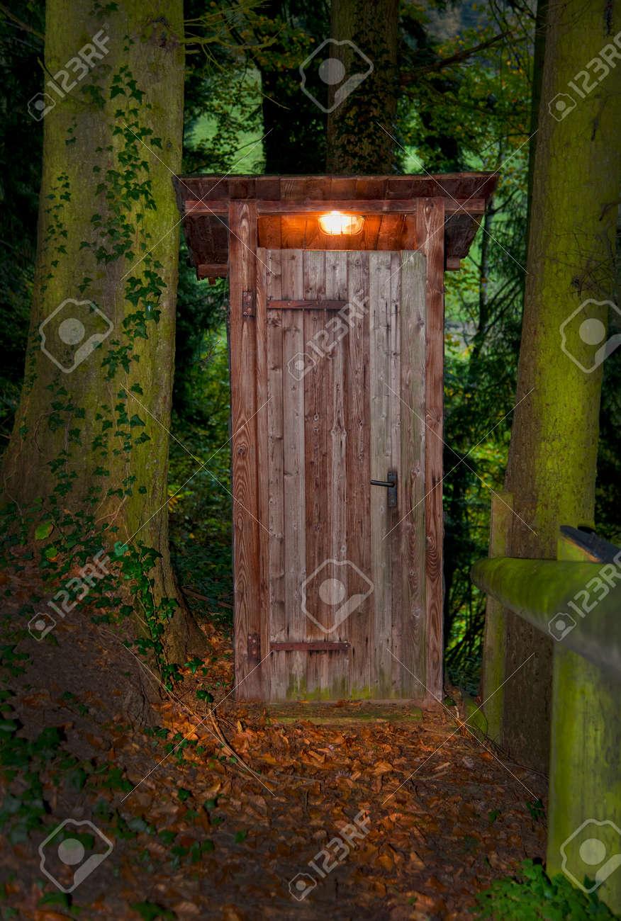 Beau Maison En Bois De Toilettes Sèches Avec Un Intérieur De La Lumière Dans La  Forêt Entre Deux Grands Arbres. Le Sol En Face De Celui Ci Est Plein De  Feuillage ...