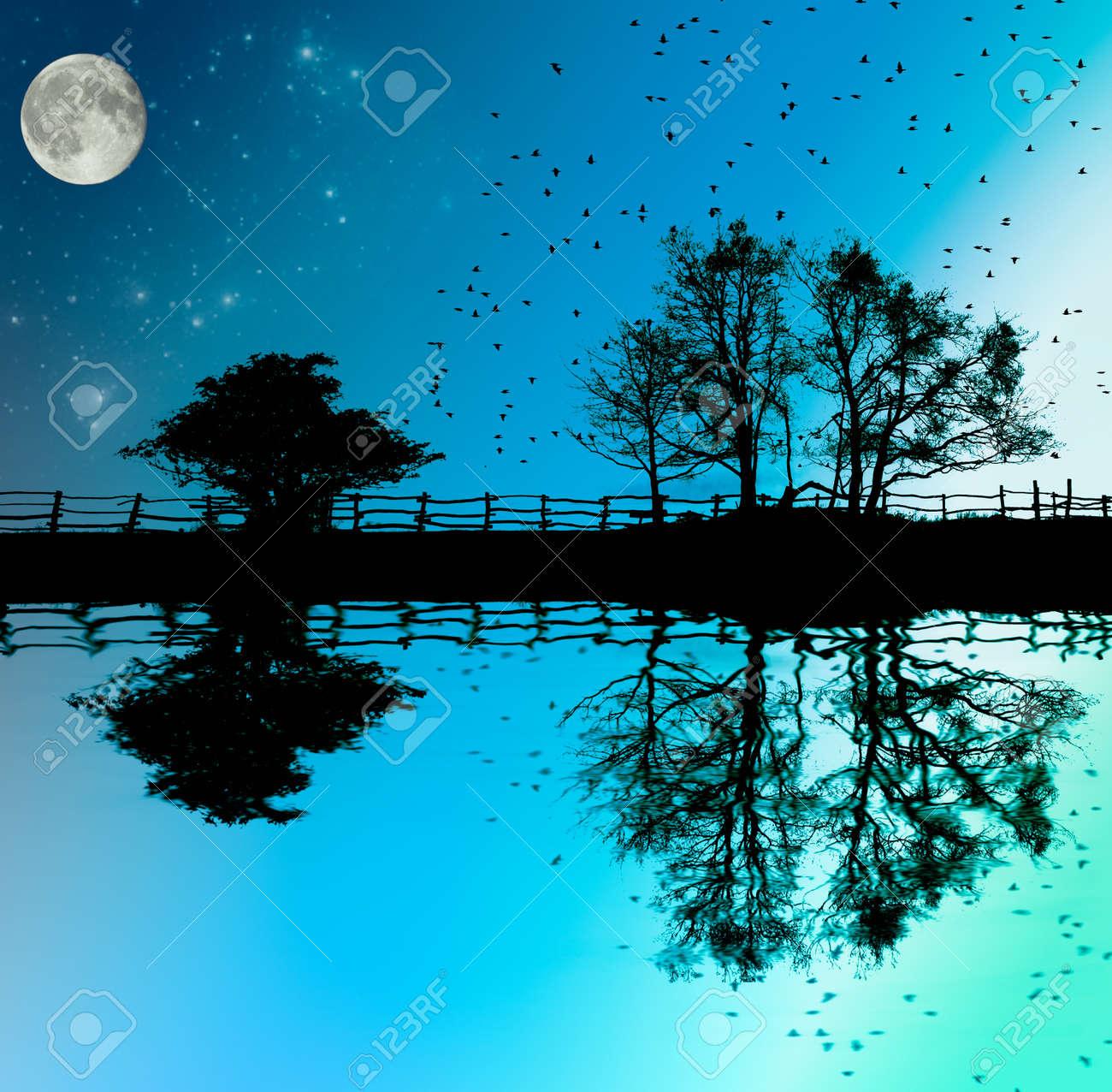 湖、フェンスと、月や星、ファンタジーのイラストで暗い空を背景に木