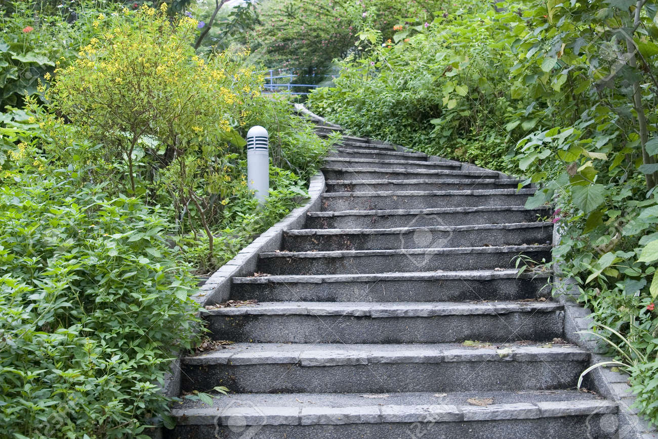 Stairs In The Garden Stock Photos Pictures Royalty Free Stairs