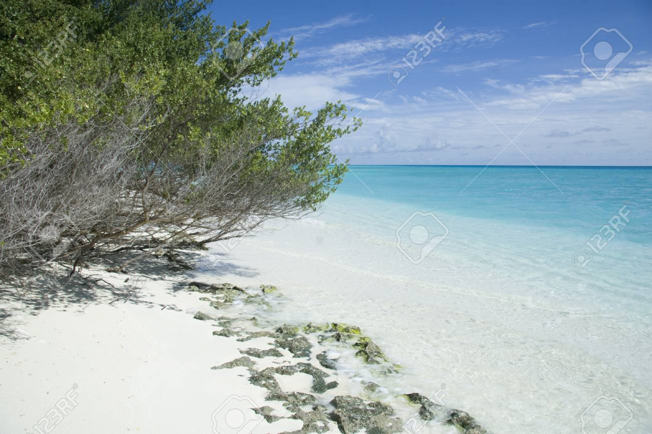 Beautiful maldives beach with clear transparent water. Stock Photo - 8433028