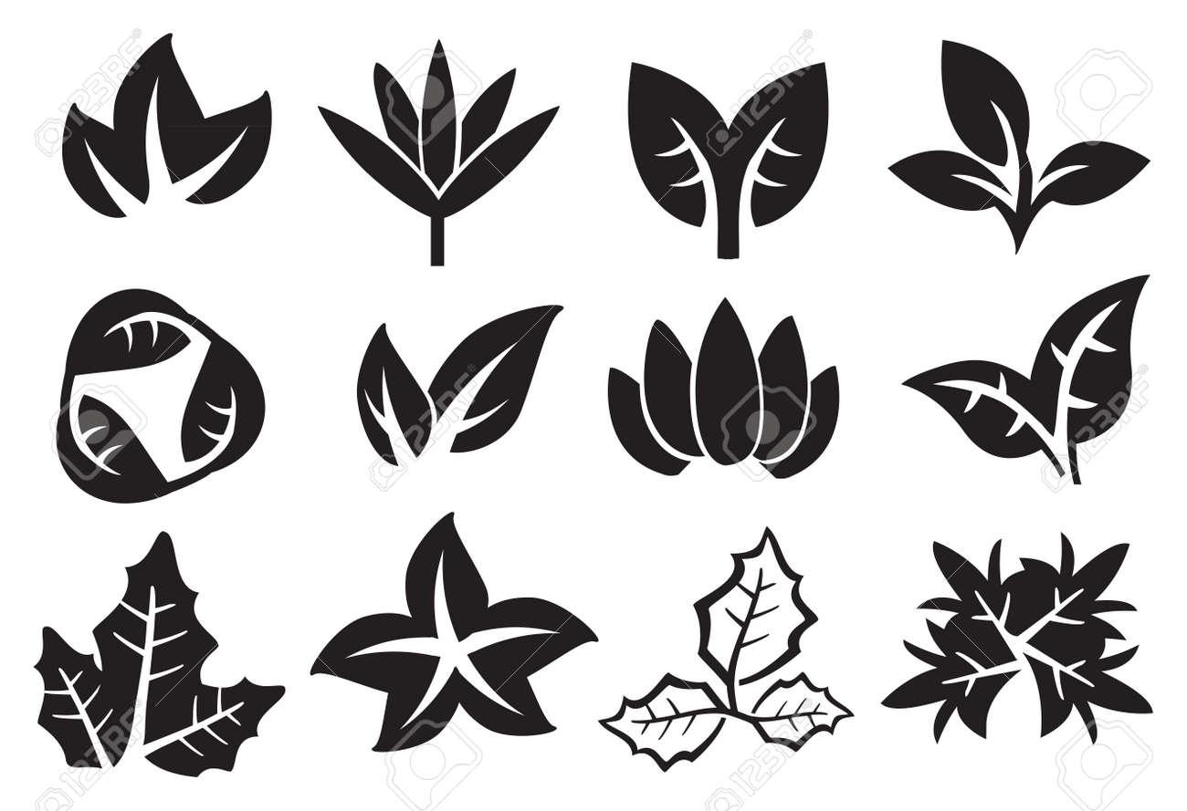 Vettoriale Foglie Bianco E Nero In Varietà Di Disegni Icone