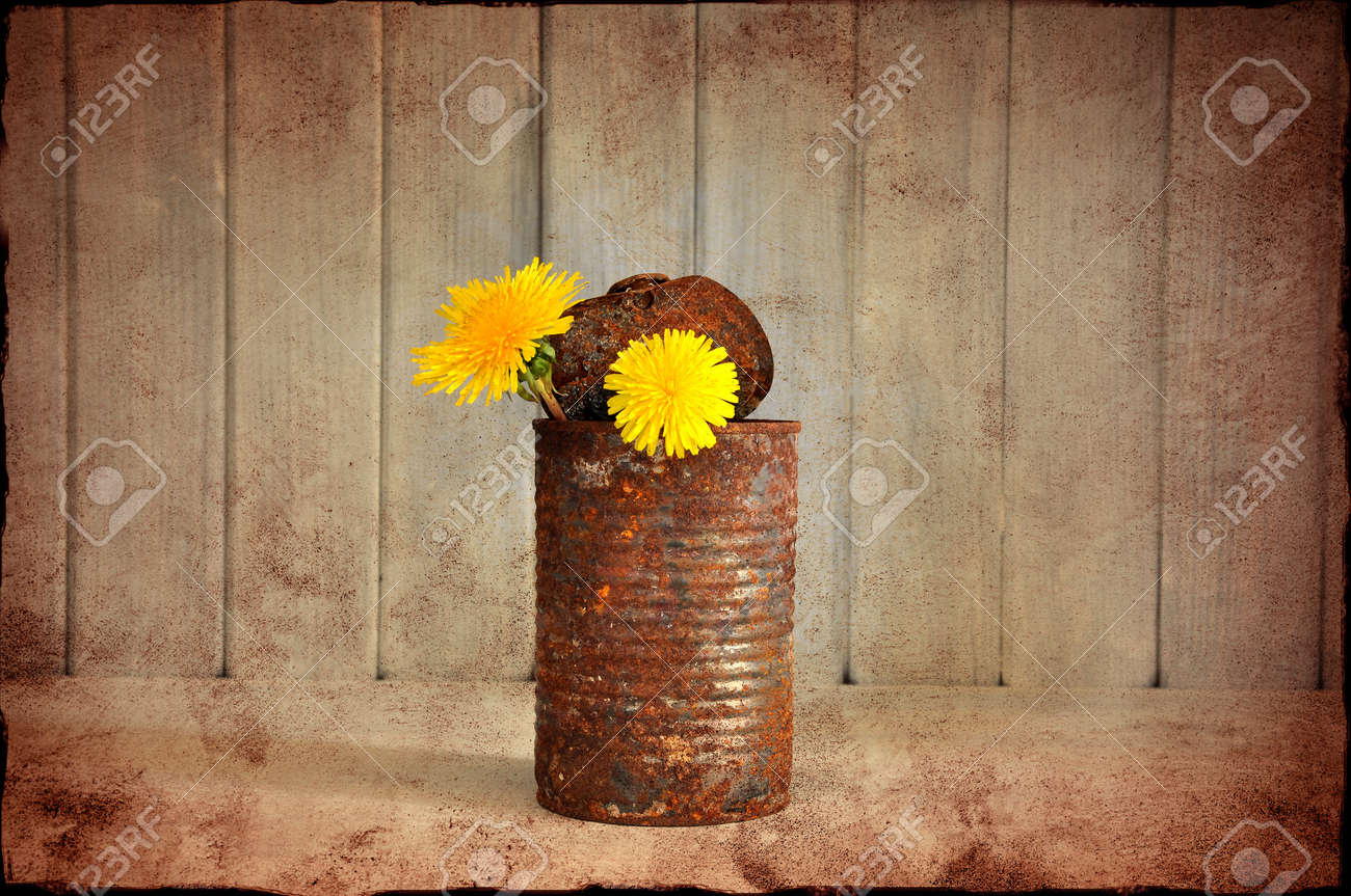 Two yellow flowers in a rusty tin can grungy style stock photo stock photo two yellow flowers in a rusty tin can grungy style mightylinksfo