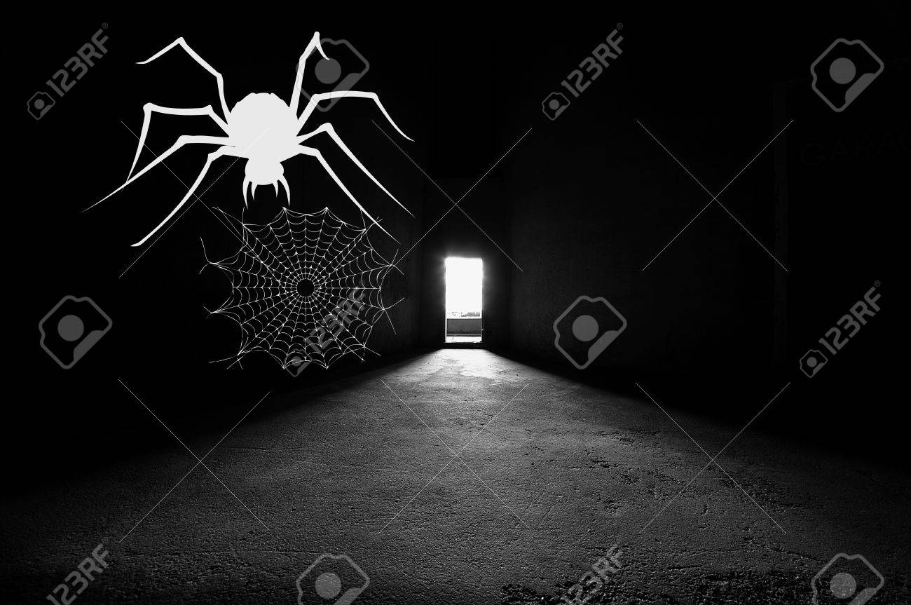 Bright door way in dark silo with white spider and webb on the wall. Stock & Bright Door Way In Dark Silo With White Spider And Webb On The ...