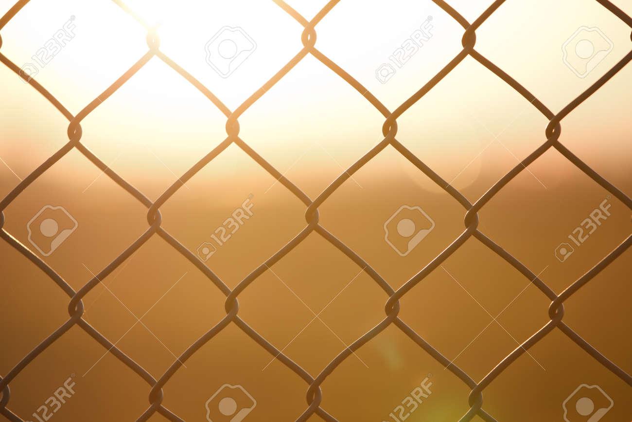 metal fence with sundown Stock Photo - 10774816
