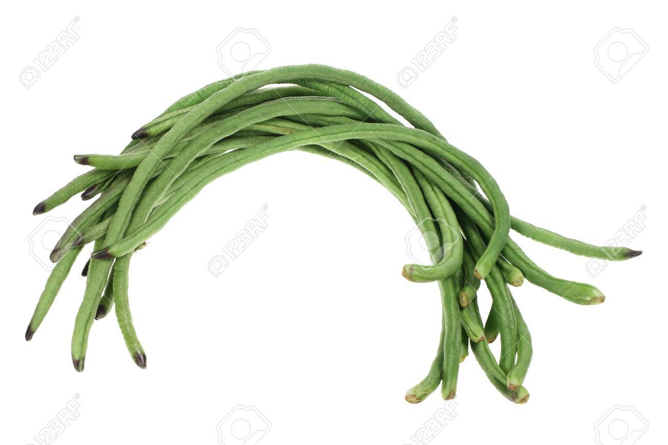 Snake Beans on White Background Stock Photo - 9705606