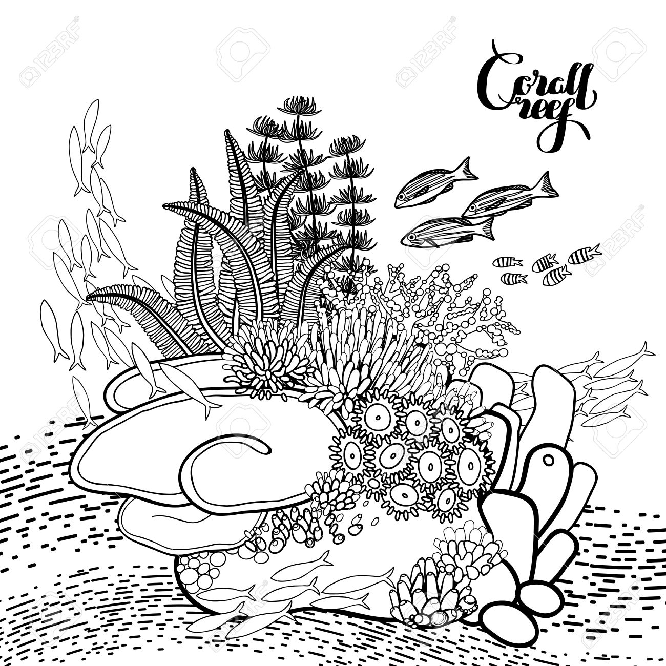 Coral Reef In Line Art Style.. Ocean Plants And Rocks Isolated ...