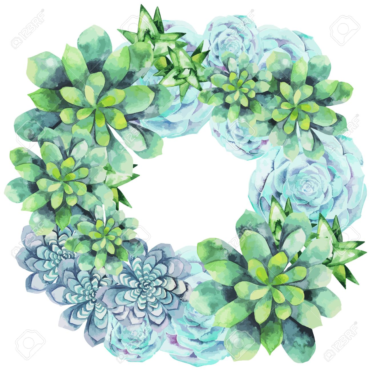 Watercolor Succulent Wreath Isolated On White Background Cute Royalty Free Cliparts Vectors And Stock Illustration Image 51484748