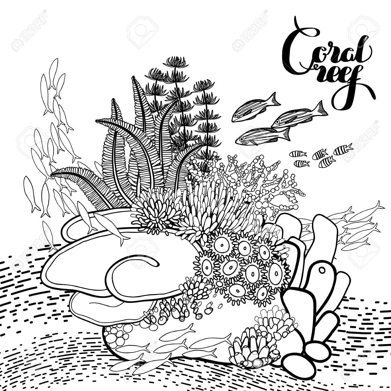 Coral Reef In Line Art Style Ocean Plants And Rocks Isolated
