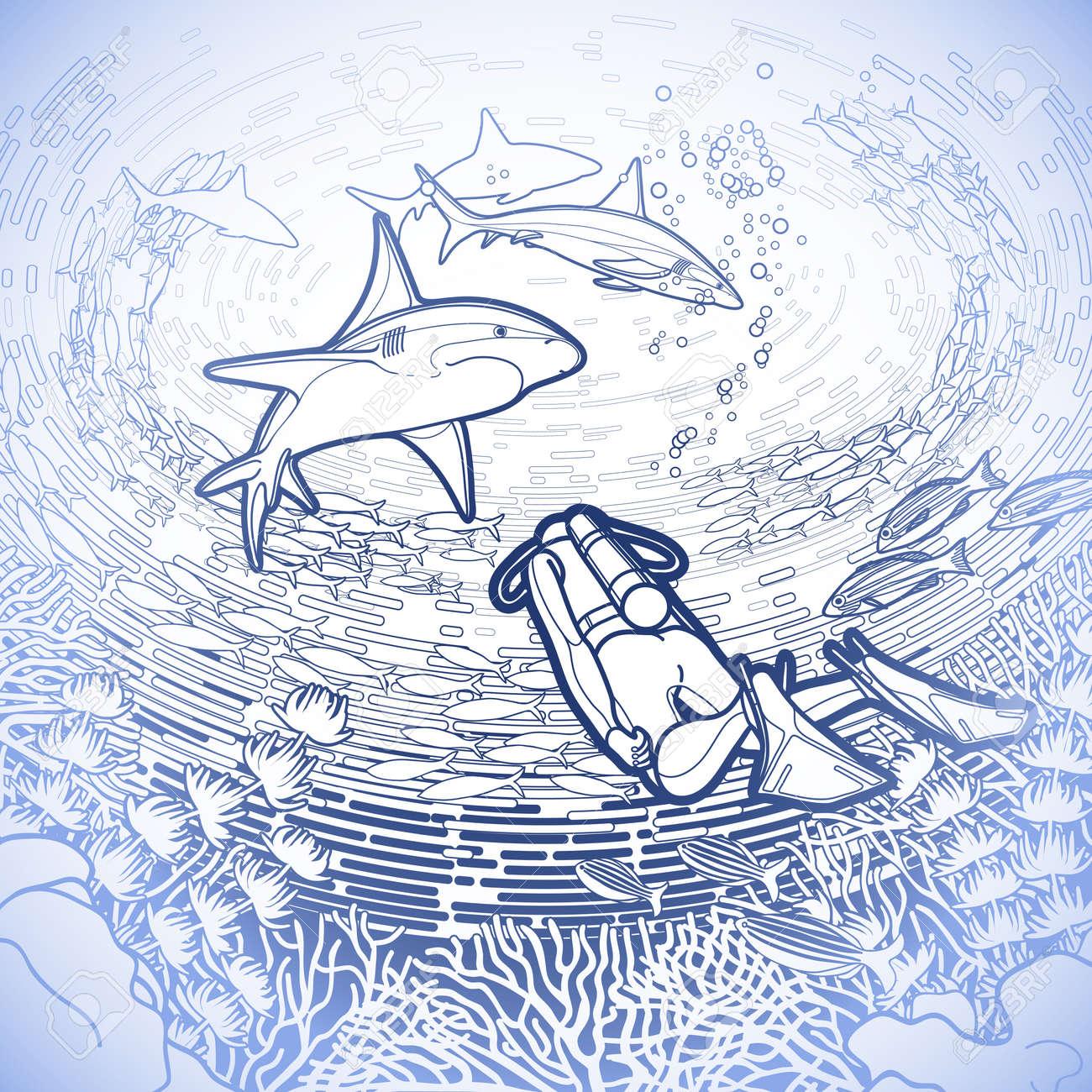 Gráfico Rea De Coral, Los Buzos Y Los Tiburones Bajo La Superficie ...