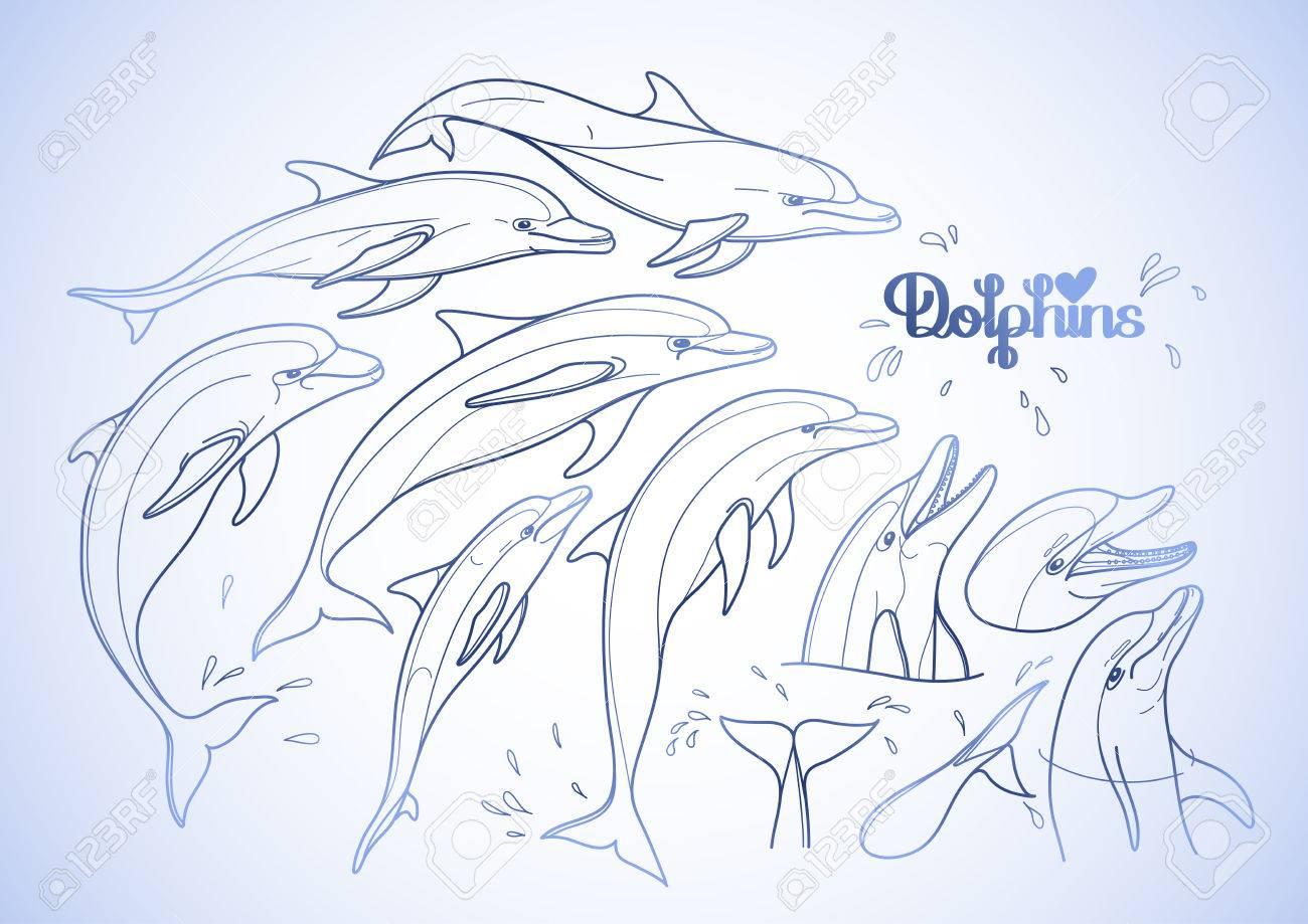 Colección De Delfines Gráfico Aislado Sobre Fondo Blanco. Las ...