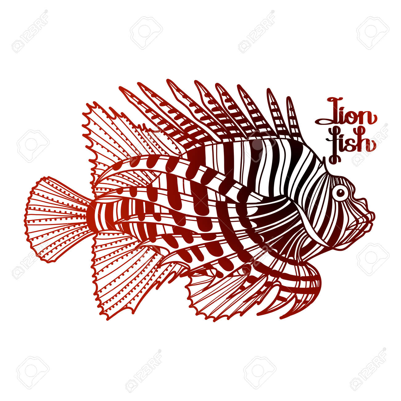 Graphic Vector Lion Fish Isolated On White Background. Sea And ...