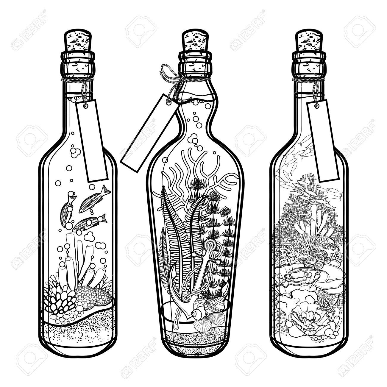 La Flora Y La Fauna Del Océano En Botellas Viajar Colección De Recuerdos Plantas Y Peces Marinos Aislados Sobre Fondo Blanco Diseño De Páginas De
