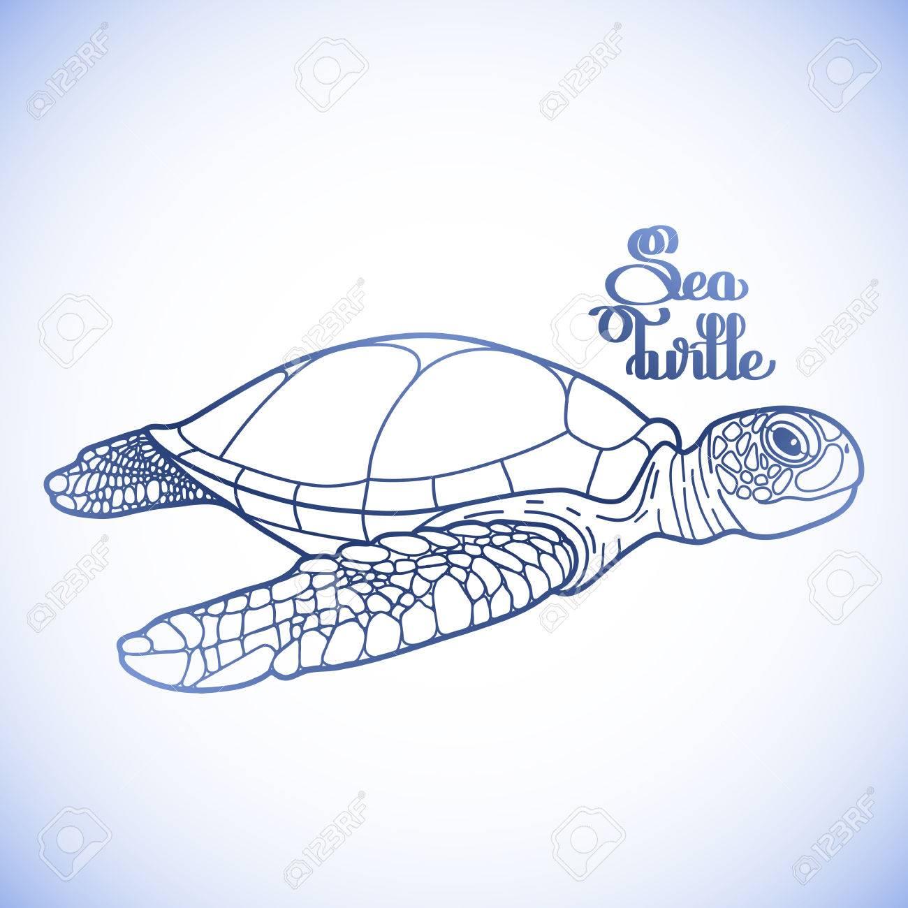 Gráfico Tortuga Marina Carey Dibujado En Línea Estilo Del Arte ...