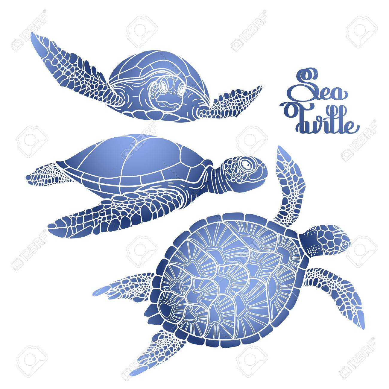 - Graphic Hawksbill Sea Turtle Collection Drawn In Line Art Style