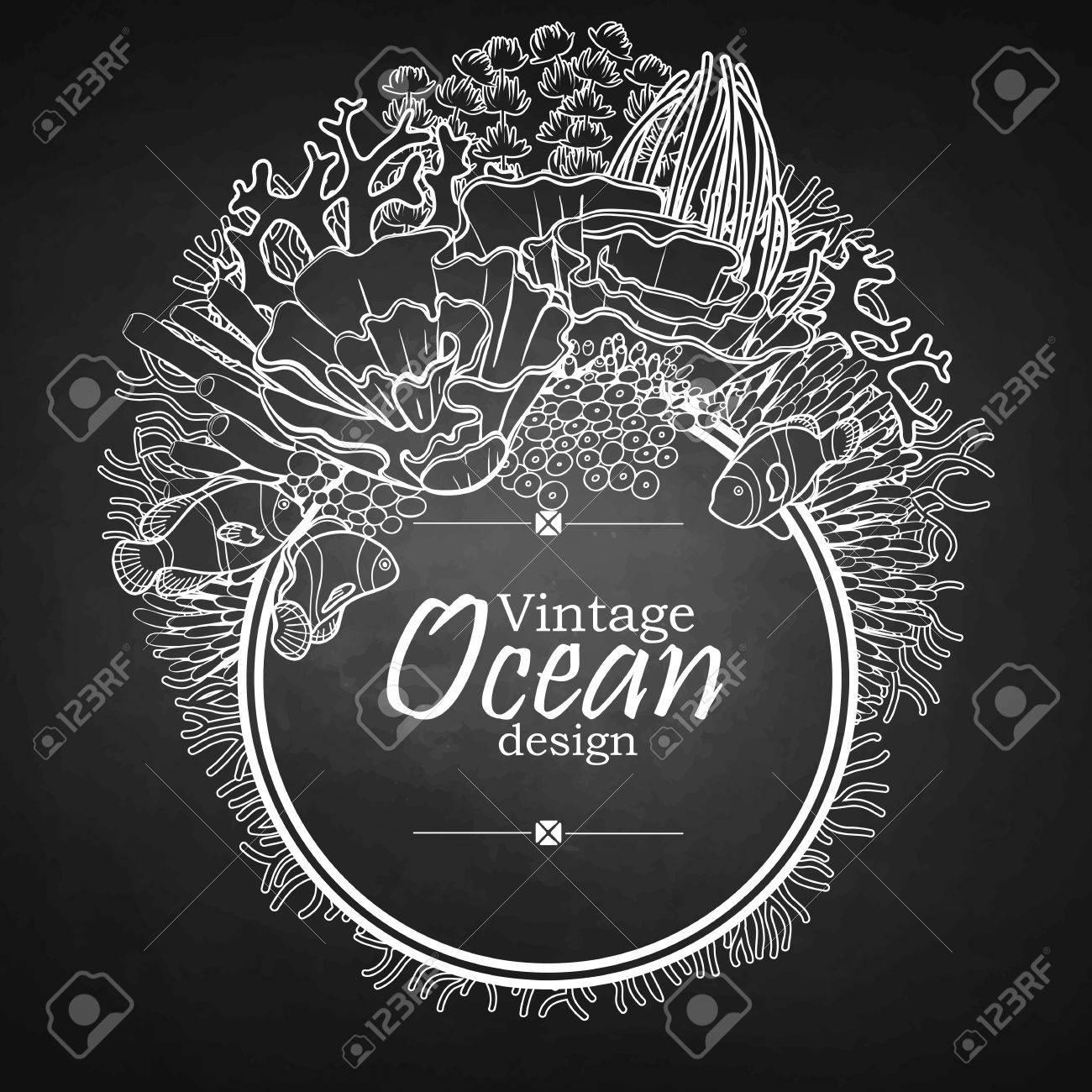 Tarjeta Gráfica De La Vendimia Con La Flora Y La Fauna Del Océano ...
