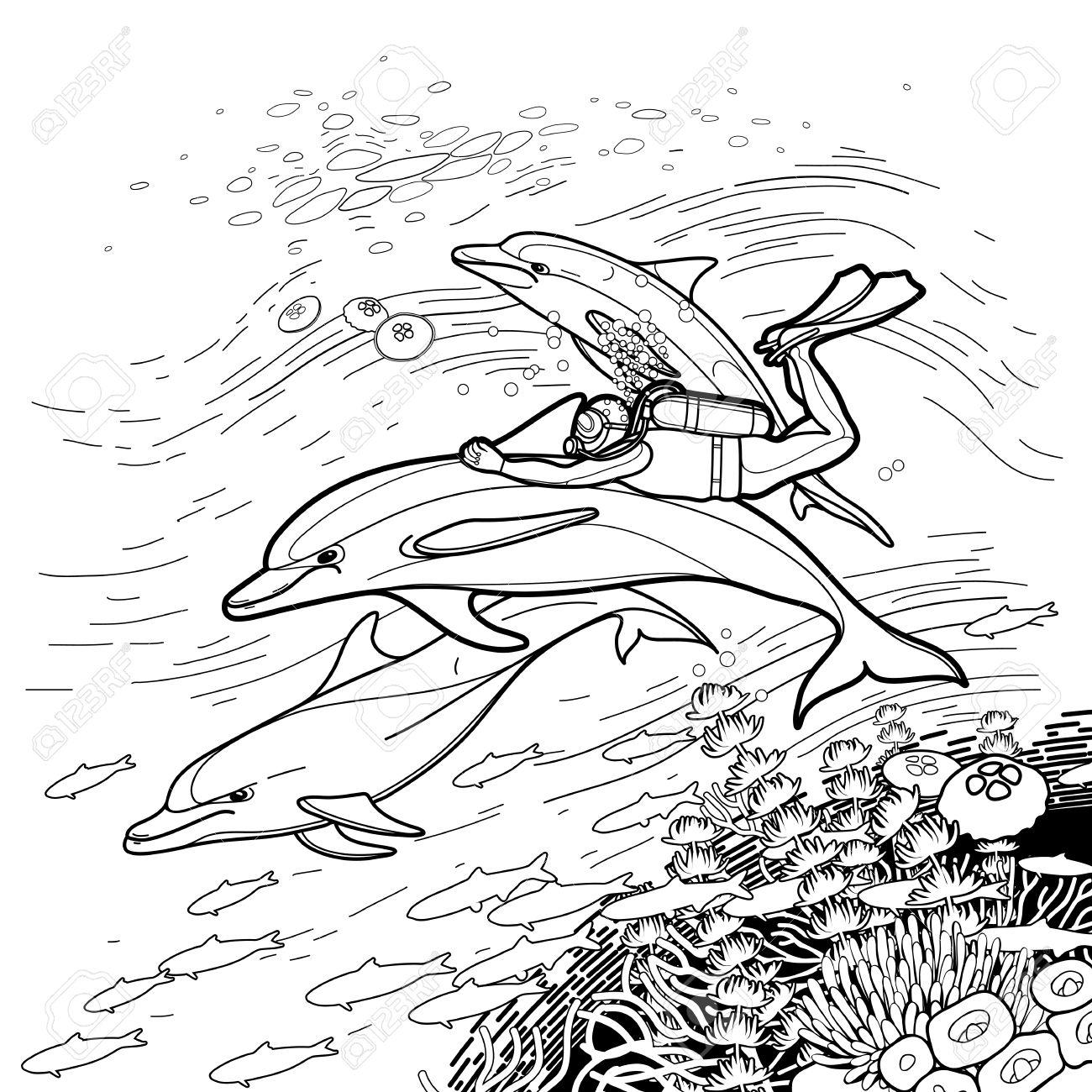 Gráfico Buzo Que Monta El Delfín Sobre El Arrecife De Coral. La ...