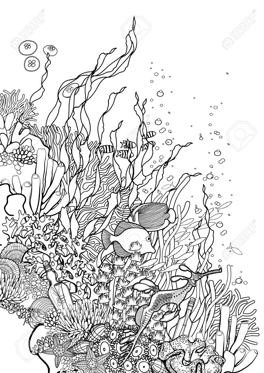 Coral Reef Line Art Wiring Diagrams Booze Bookshelf With Leds And Builtin Dance Party The Mozmonkey Graphic Drawn In Style Ocean Plants Rocks Rh Pt 123rf Com Clip Sun