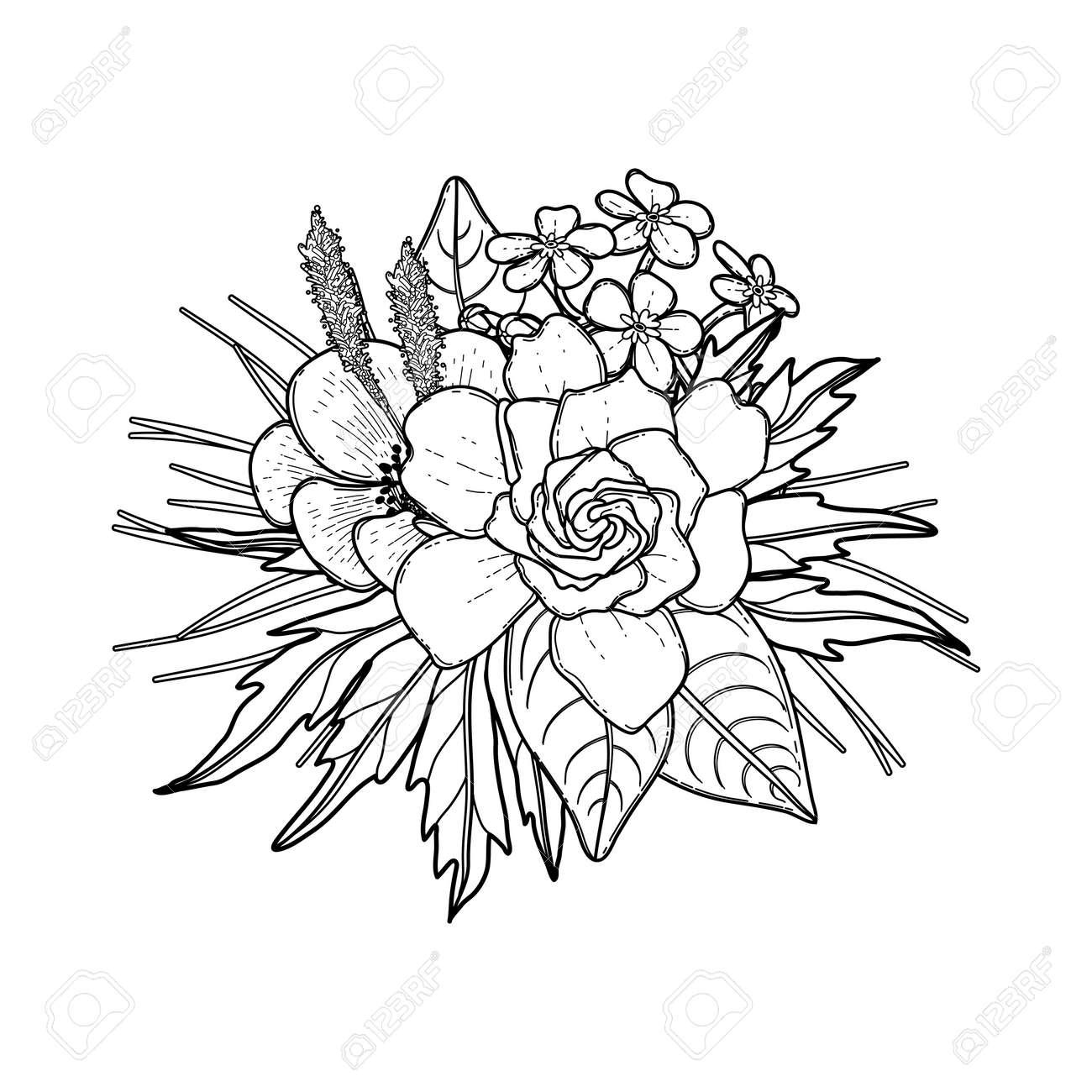 Tarjeta Floral Gráfico. Vectores De Las Hojas Y Flores En Una Viñeta ...