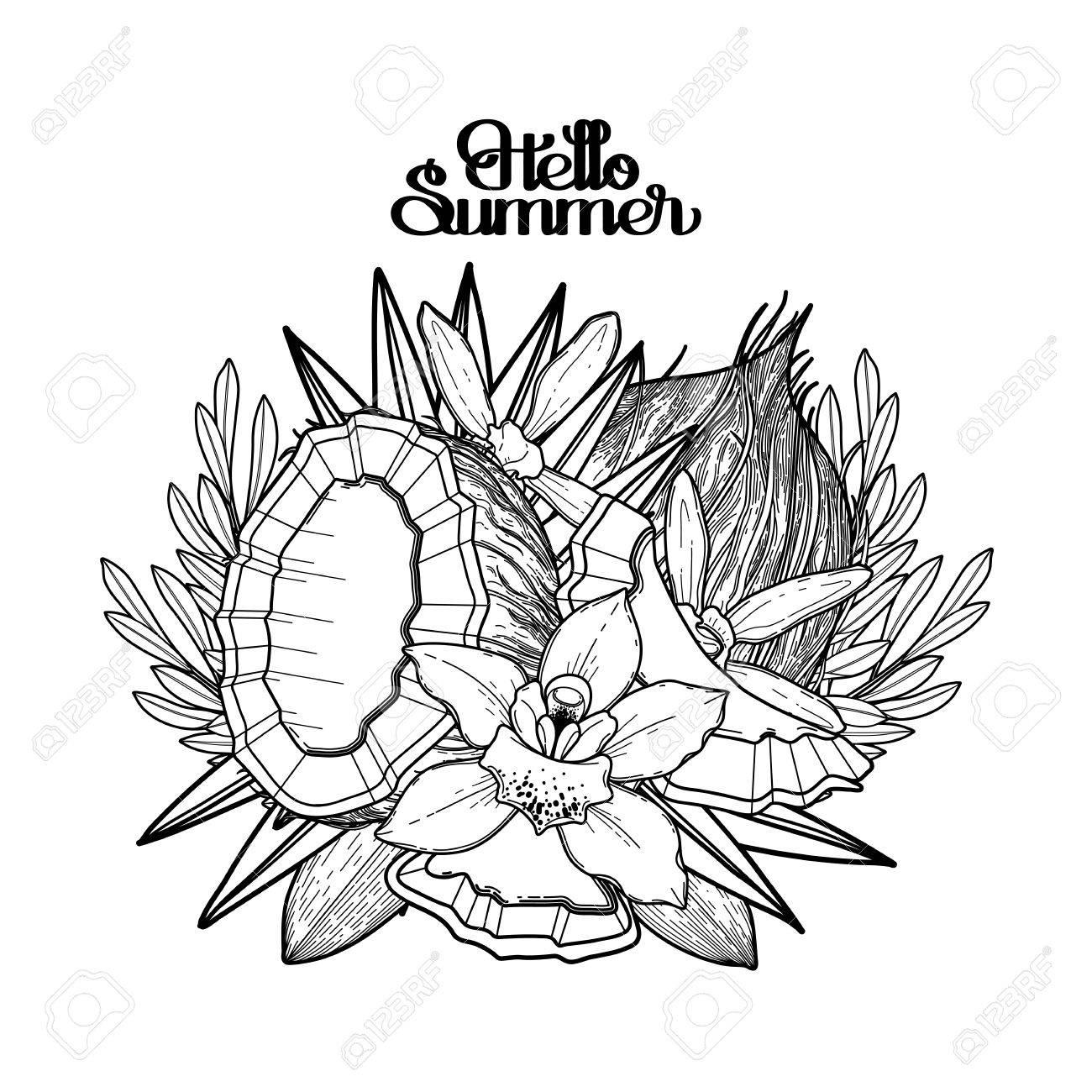 Fleurs De Vanille Graphique Et Noix De Coco Florette Vignettevector Décorations Naturelles Isolées Sur Fond Blanc Conception De Page De Livre à