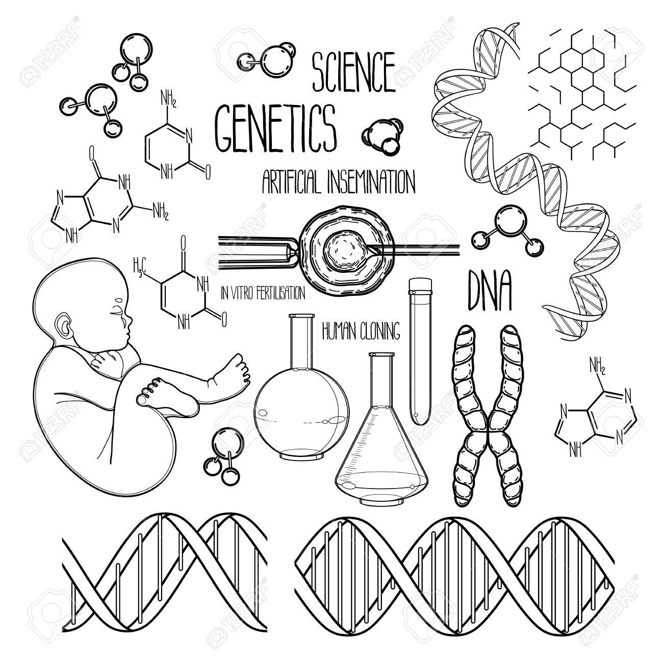Graphic Genetic Research Set Vector Medical And Science Collection Isolated On White Background Coloring