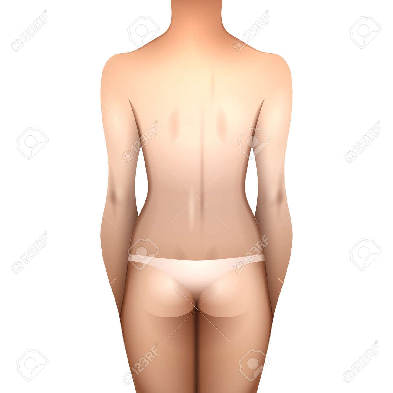3217409fad77 Cuerpo de la mujer en ropa interior blanca europea. Vista trasera. Modelo  del vector para el diseño de tatuaje aislado en el fondo blanco
