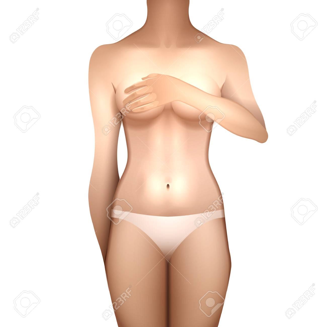 a7d0cce3980c Chica Europea cubriendo el cofre con su mano. Cuerpo de mujer en lencería  blanca. Vista frontal. Plantilla de vectores para el diseño del tatuaje ...