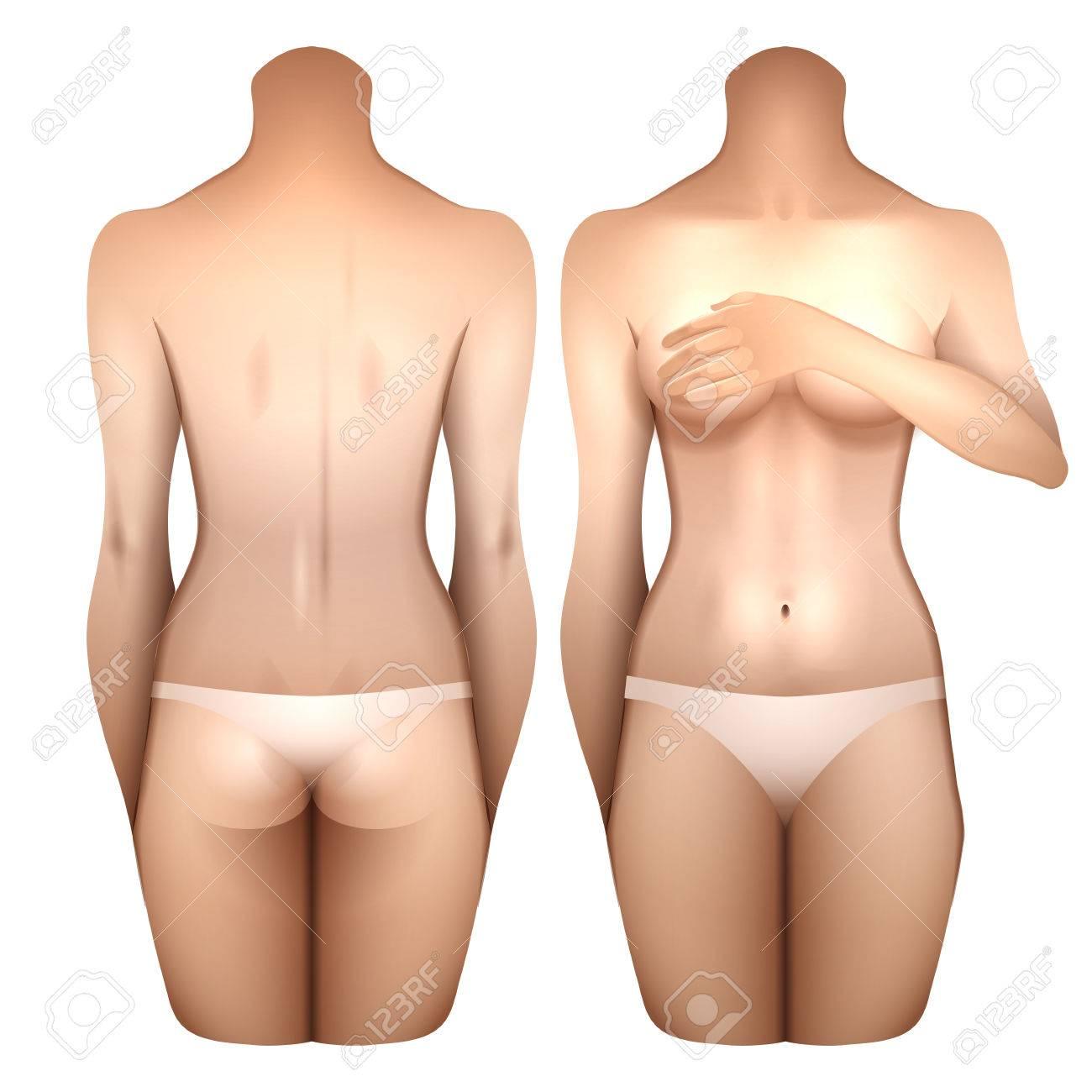 8635b345e8fa Chica Europea cubriendo el cofre con su mano. Cuerpo de mujer en lencería  blanca. Vistas frontal y posterior. Plantilla de vectores para el diseño  del ...