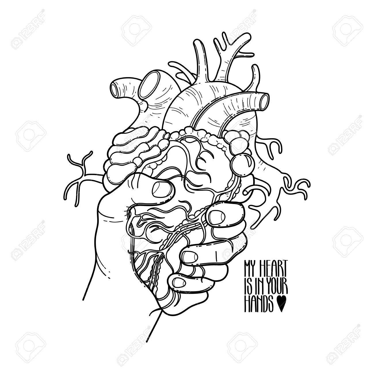 Gráfico De La Mano Agarrando El Corazón Humano. Tarjeta Del Vector ...