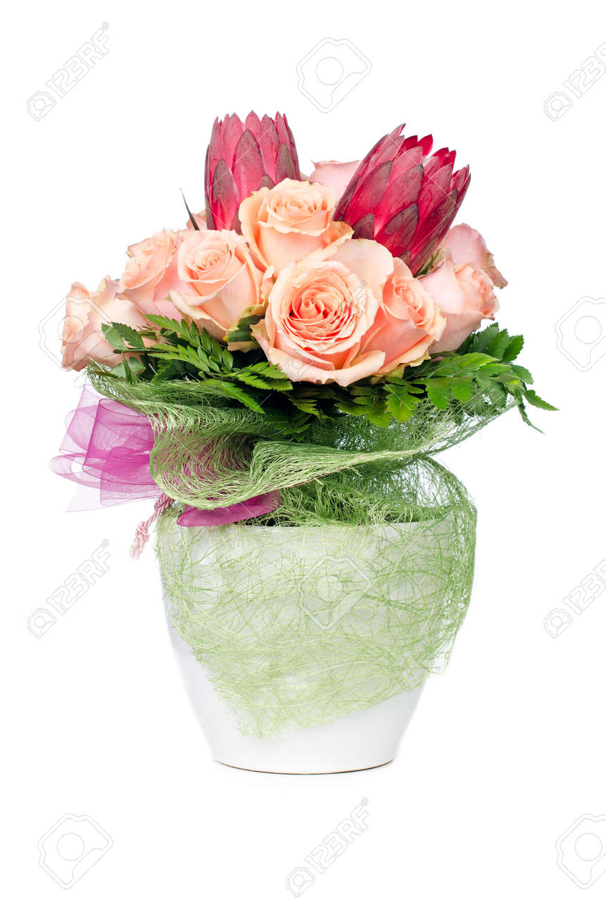 Orange Rose Flowers In Modern White Flower Pot Isolated On White Stock Photo Picture And Royalty Free Image Image 10528407