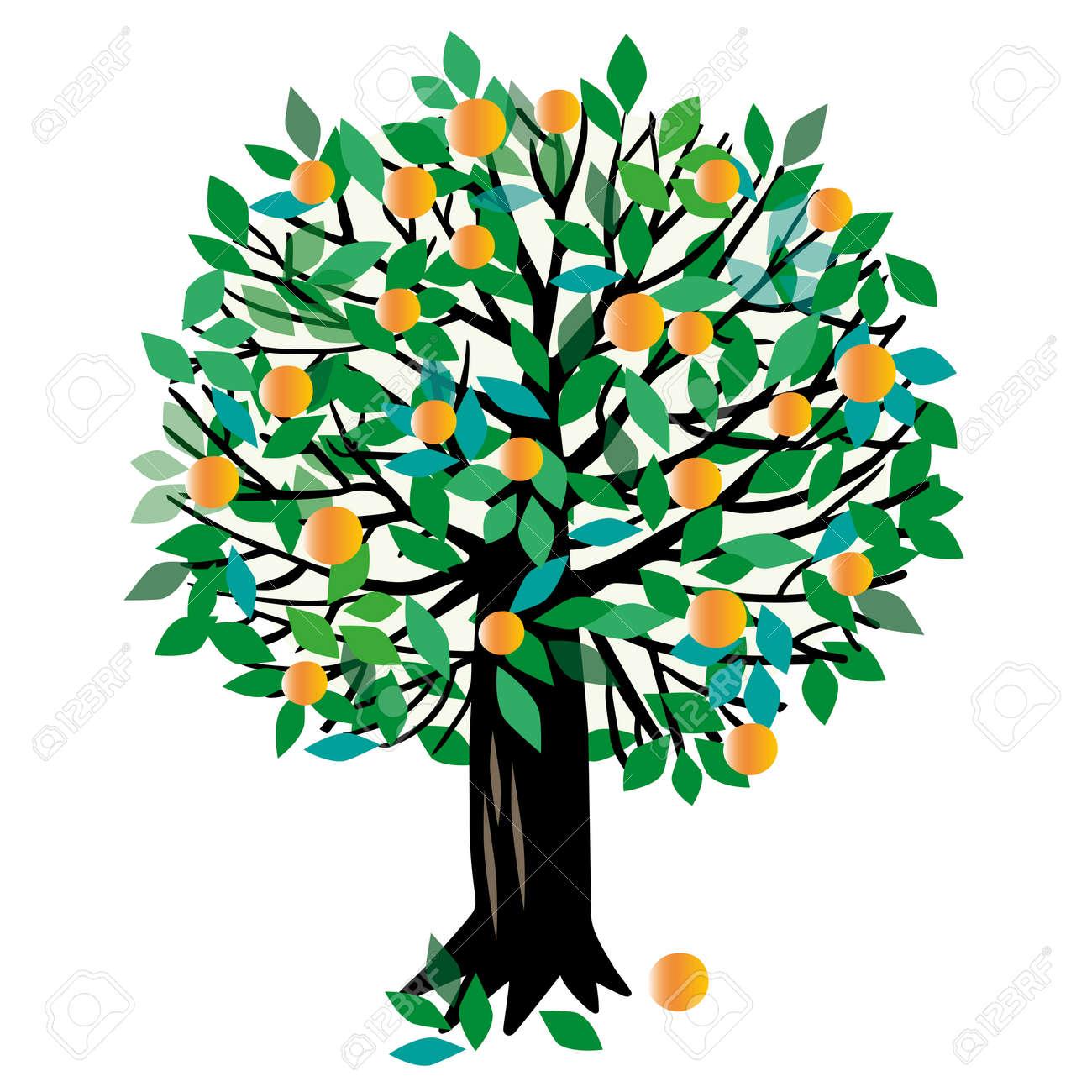illustration of a fruit tree. Peach tree or Orange tree - 59857004
