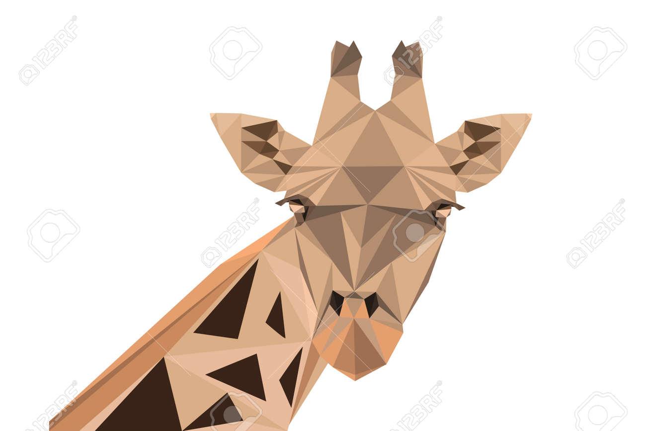 Abstract polygonal vector illustration. Portrait of giraffe. - 39900810