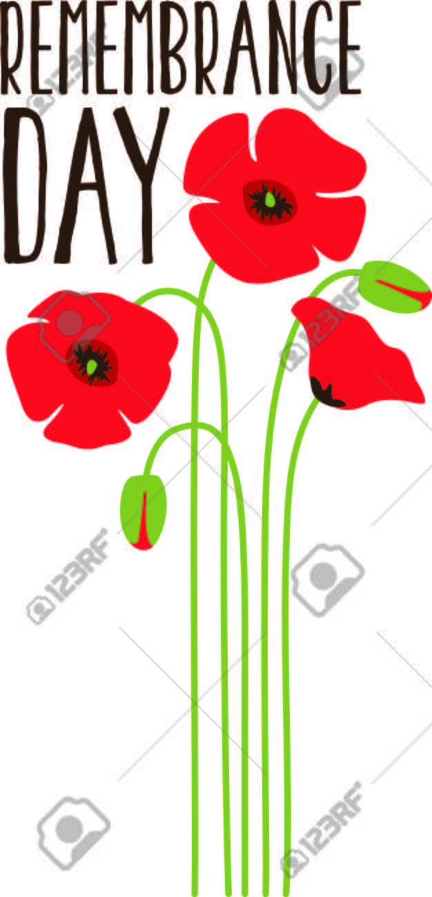 Poppy flowers are a symbol of remembrance this simple yet poppy flowers are a symbol of remembrance this simple yet lovely bouquet is a buycottarizona