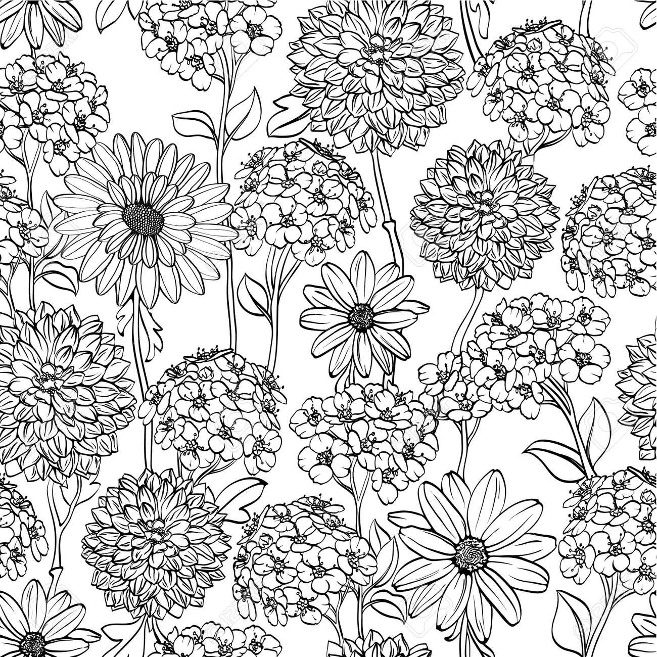 Noir Et Blanc Motif Floral Transparente Avec Des Fleurs Dessinées à La Main