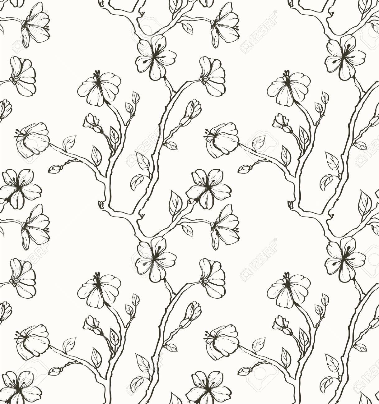 Sakura on the white background Stock Vector - 10802246