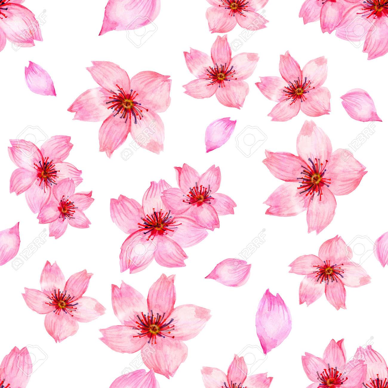 Watercolor Pink Cherry Blossom Sakura Japan Season Flower Isolated