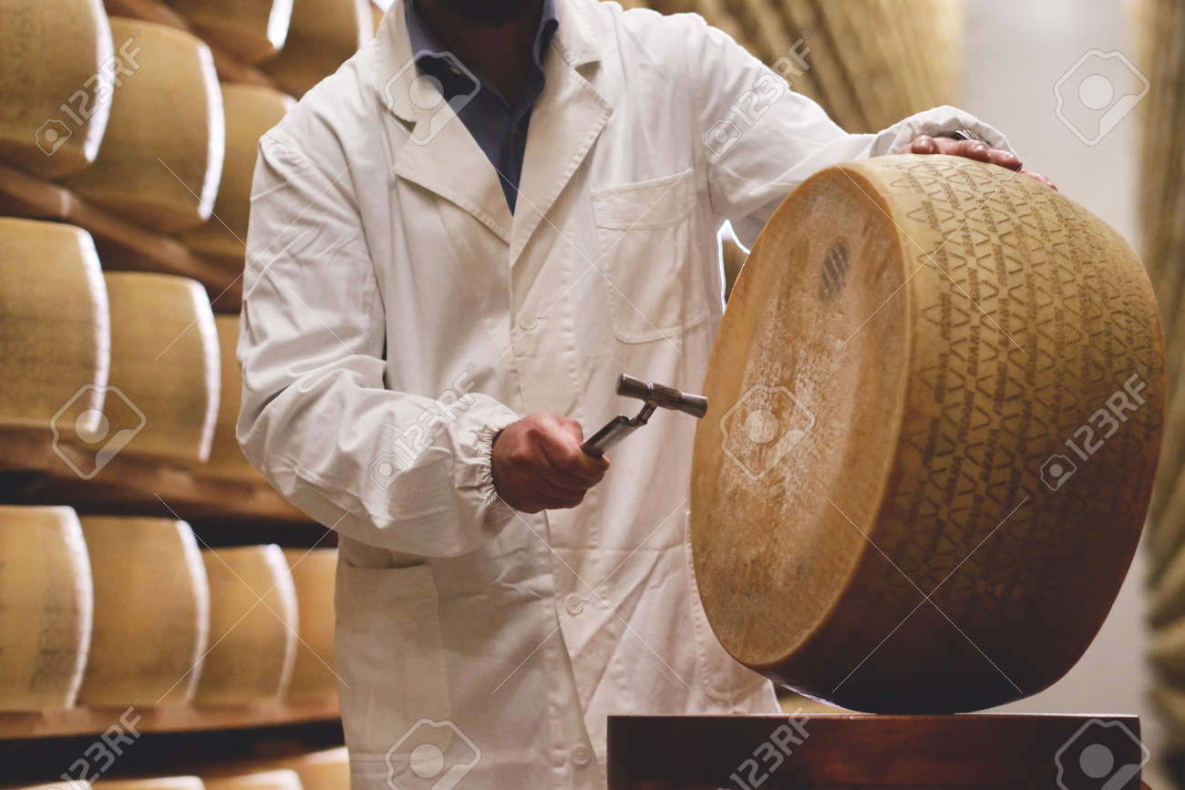 A cheesemaker controls the seasoning of the Parmesan cheese. The processing is done following the ancient Italian tradition. - 113391116