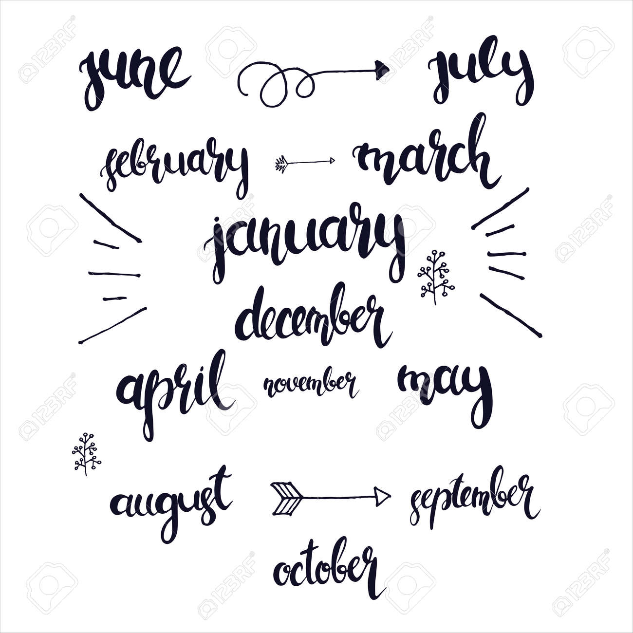 Lettering Hand Drawn Months In The Whole Year Vector Royalty Free