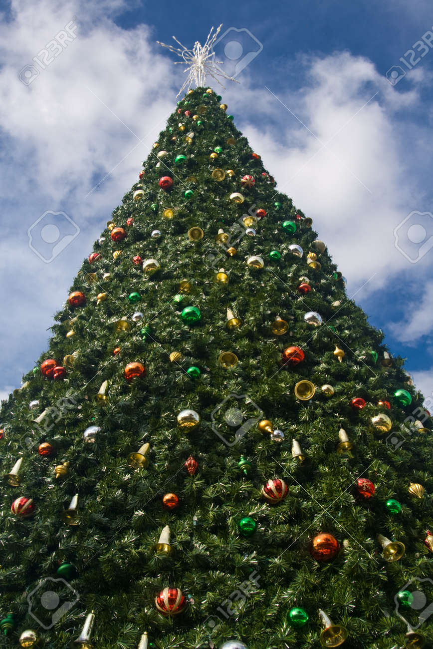 How to decorate tall outdoor christmas tree - Large Decorated Outdoor Christmas Tree Stock Photo 7989863