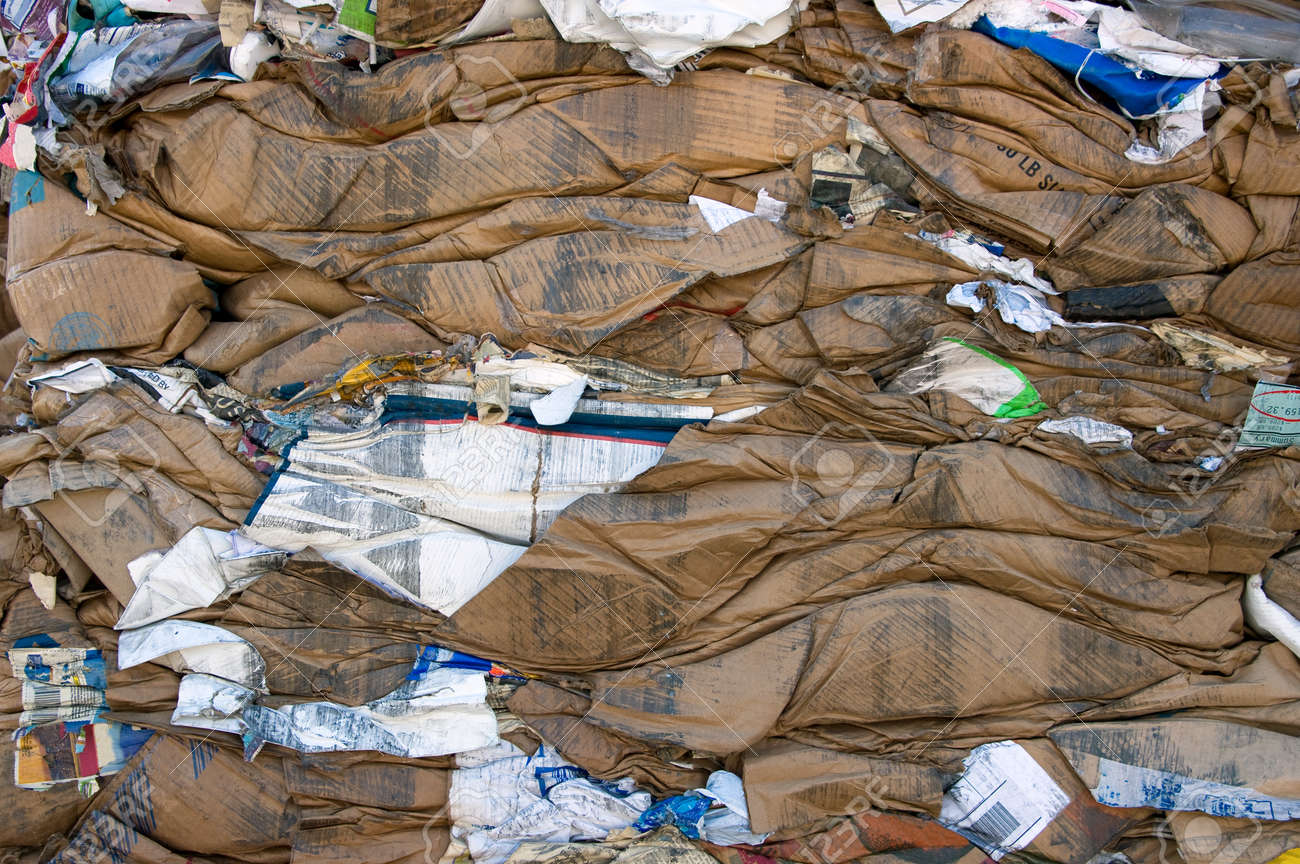 A bale of compressed cardboard for recycling - 24960461