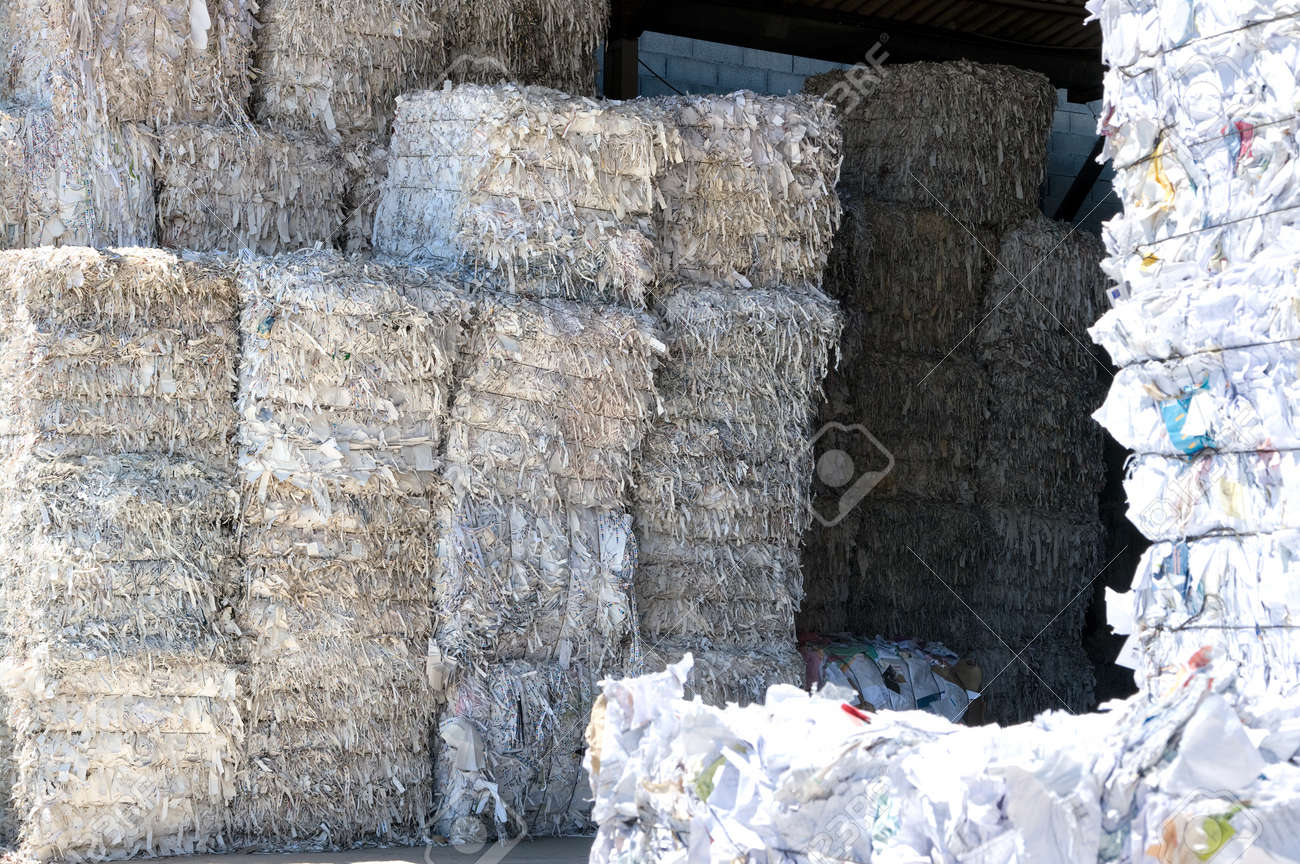 Bale of compressed paper for recycling - 24960602