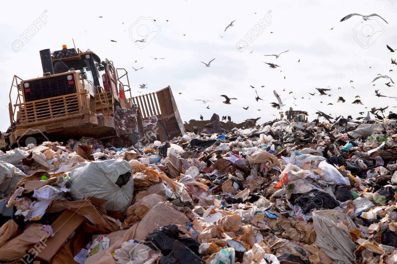 Truck working in landfill with birds looking for food - 25116015