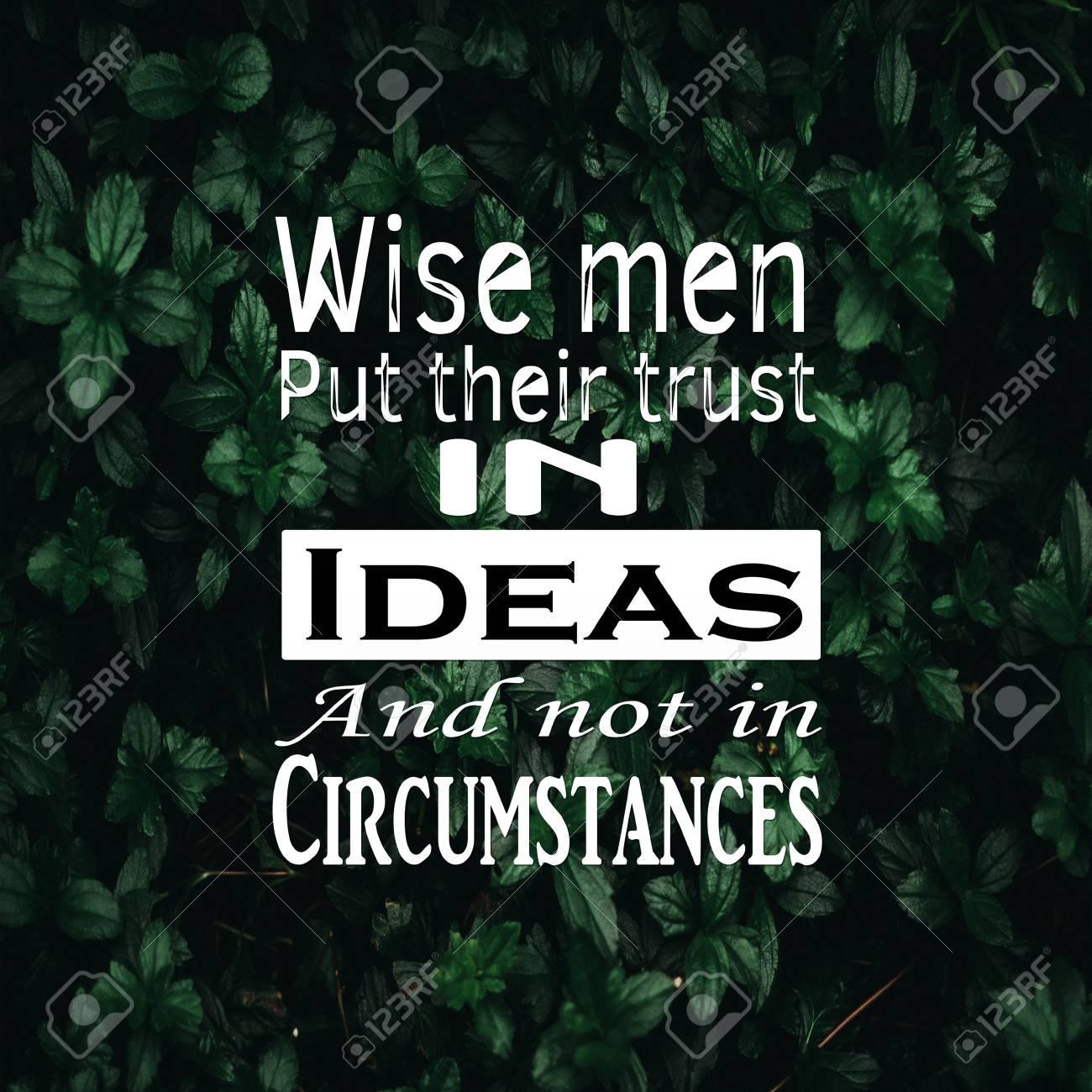 Inspirational Quotes wise men put their trust in ideas and not..