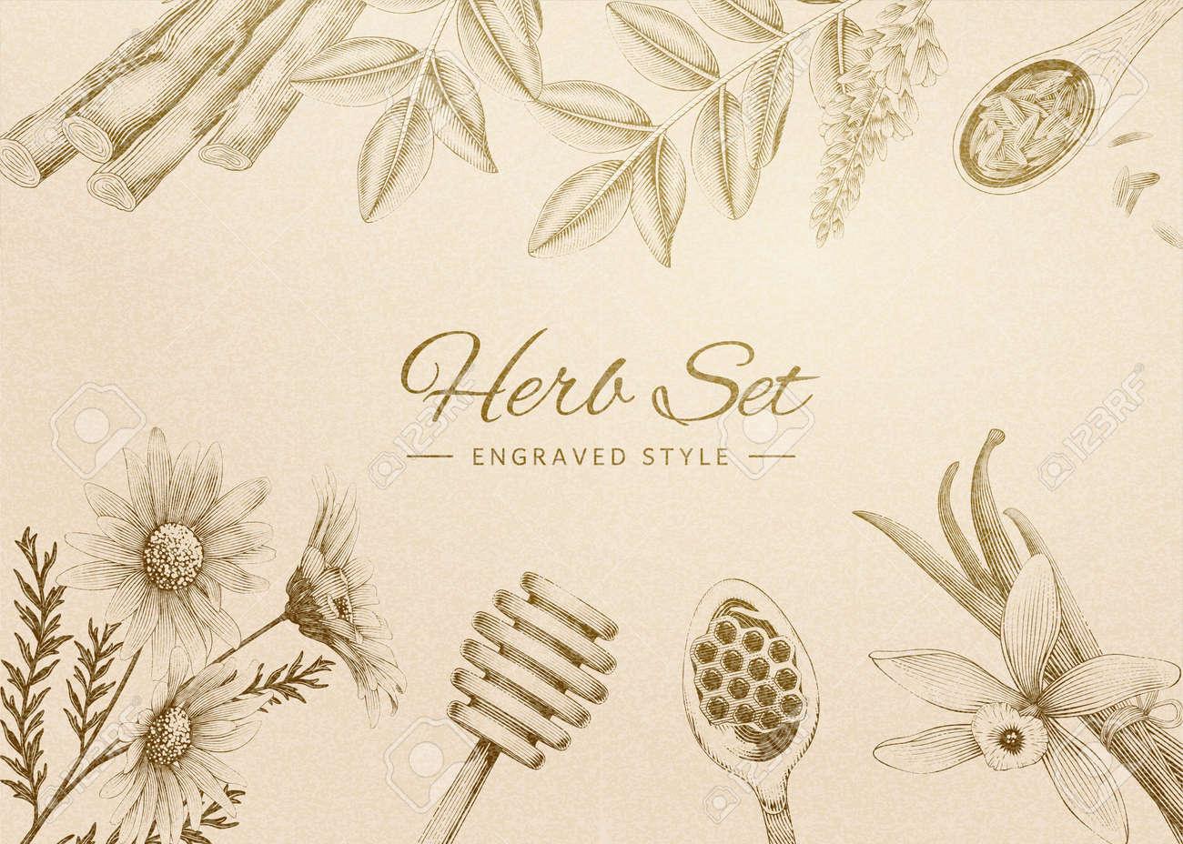 Retro style engraved herbal set on beige - 124277276